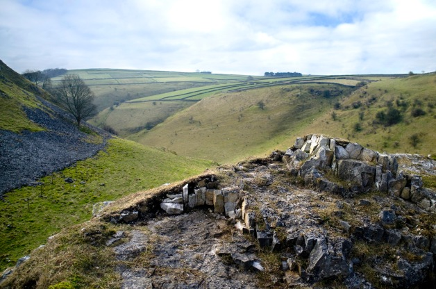 Outcrop in the dale