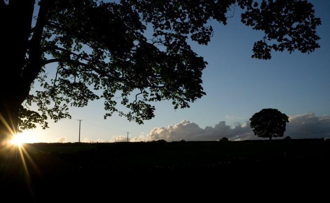 silhouettes at sundown